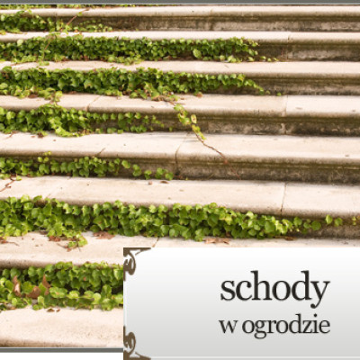 Schody w ogrodzie